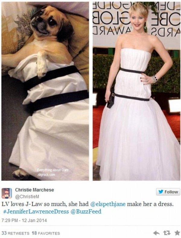 GOLDEN GLOBES AWARDS 2014   Jennifer Lawrence: Sa robe détournée et imitée