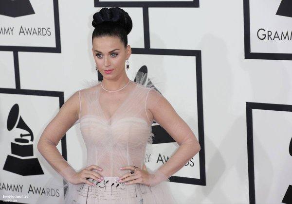 GRAMMY AWARDS 2014: Cérémonie, Red Carpet, Palmarés, Récompense et Vidéos  Katy Perry et son frère sur le Red Carpet