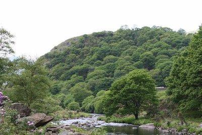 Dinas Emrys, la forteresse de Vortigern ?