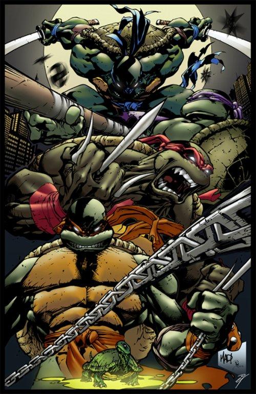 Les Tortues Ninja Le Roi Arthur La Réalité Derrière Le Mythe
