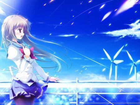 L'énergie éolienne : l'énergie de l'avenir ?