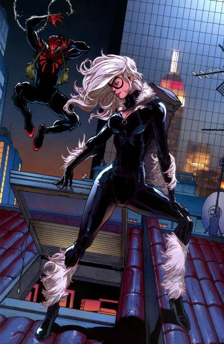 Black Cat, une femme sachant man½uvrer dans le monde difficile des super héros