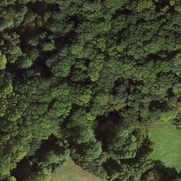 Great Bedwyn, un site qui pourrait être celui de la bataille du mont Badon ?