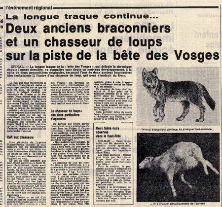 La bête des Vosges, une affaire vosgienne qui a fait beaucoup de bruit