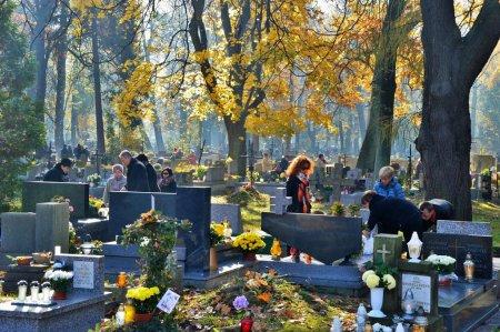 La Toussaint en Pologne : des fleurs et des bougies pour apaiser les morts