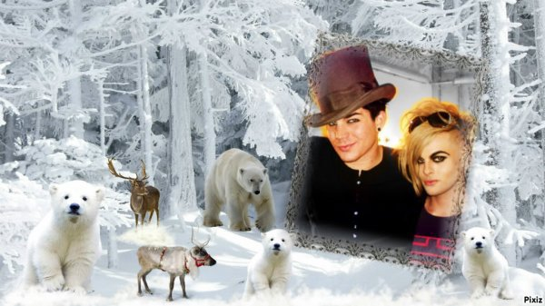 L'hiver commence et Noël arrive bientôt !
