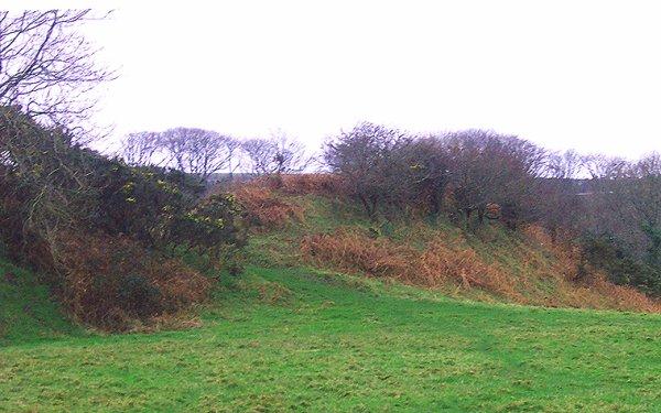 Le château de Walwyn, la capitale de Gwalchlmai