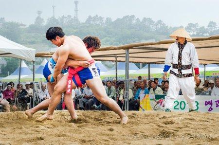La lutte coréenne sur la liste du patrimoine de l'Unesco grâce à une candidature conjointe des deux Corées