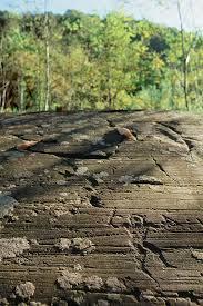 Valcamonica, un art rupestre d'un peuple aux contacts culturels et commerciaux n'ayant pas besoin de civilisations disparues