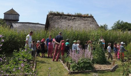 Le château à motte de Saint-Sylvain-d'Anjou, un lieu où revivre le XIIe siècle