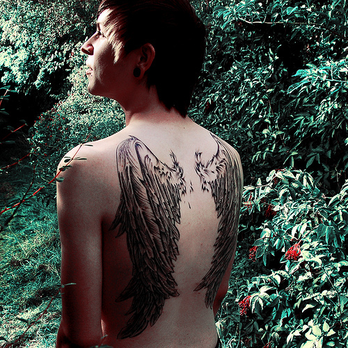 Je suis jalouse de ces ailes !