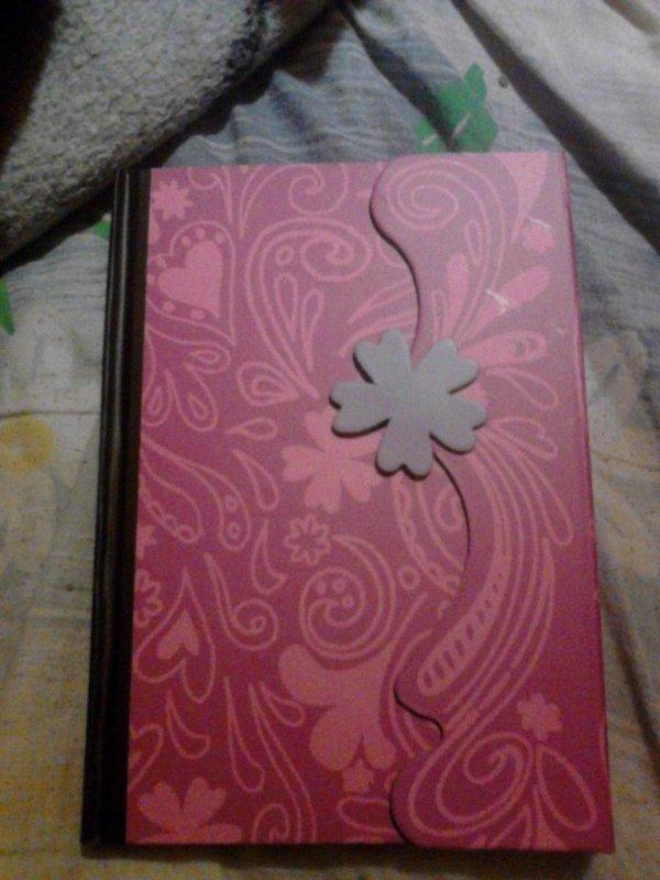 Journal violetta