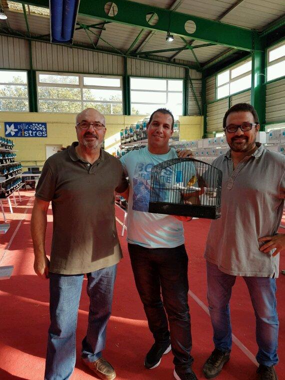 Concours raza espagnol à Istres du 8 9 octobre 2016 3 champion 1promis best  1em grand meilleur prix d'élevage