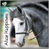 alice-happiness