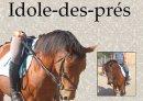 Photo de Idole-Des-Pres