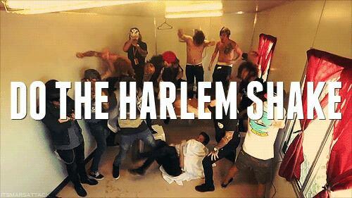Harlem Shake ♥