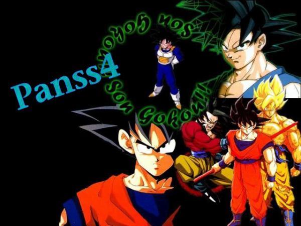 Histoire  de Son Goku