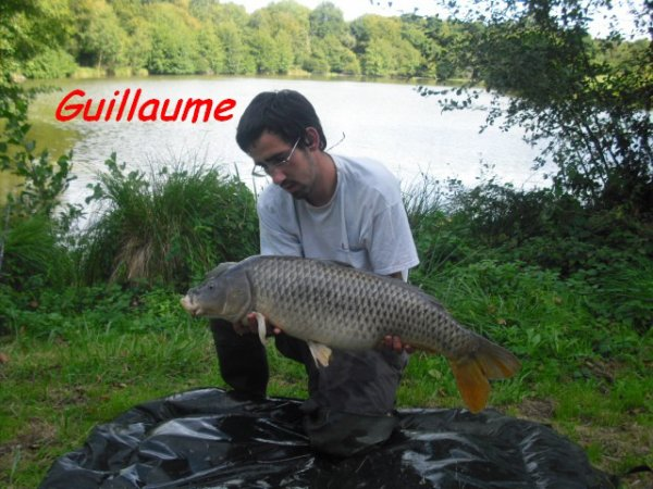 Guillaume Administrateur