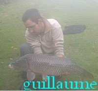 interwiew guillaume