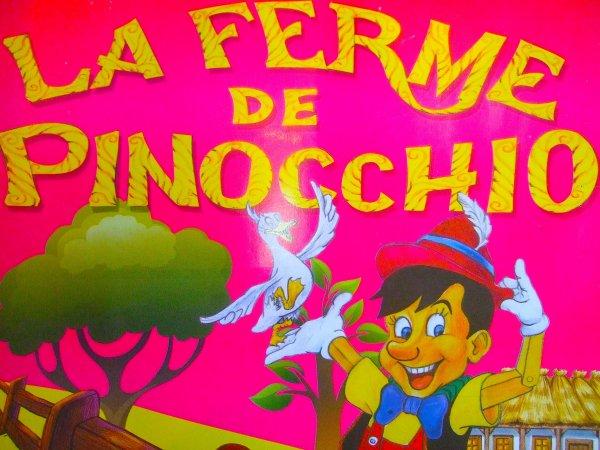 VOUS PRÉSENTE SON TOUT NOUVEAU REPORTAGE SUR LA FERME DE PINNOCHIO !!