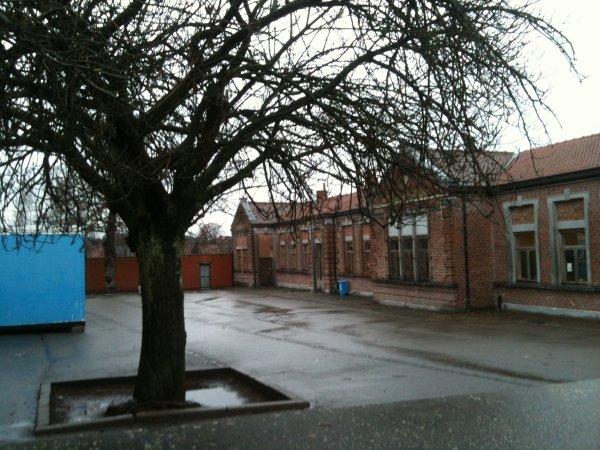 Blog de sart-allet-gilly - Page 4 - Ecole communale de ...