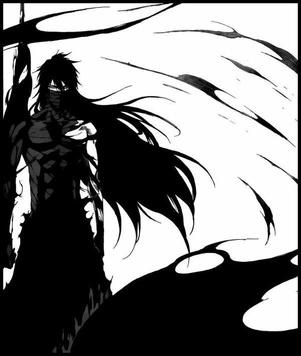 """""""Il semblerait que tu ne l'aies pas remarqué. Je suis plus puissant que toi maintenant. Ce qui a detruit cette montagne ce n'était pas ton sabre. C'était le mien."""" Bleach - Chap418"""