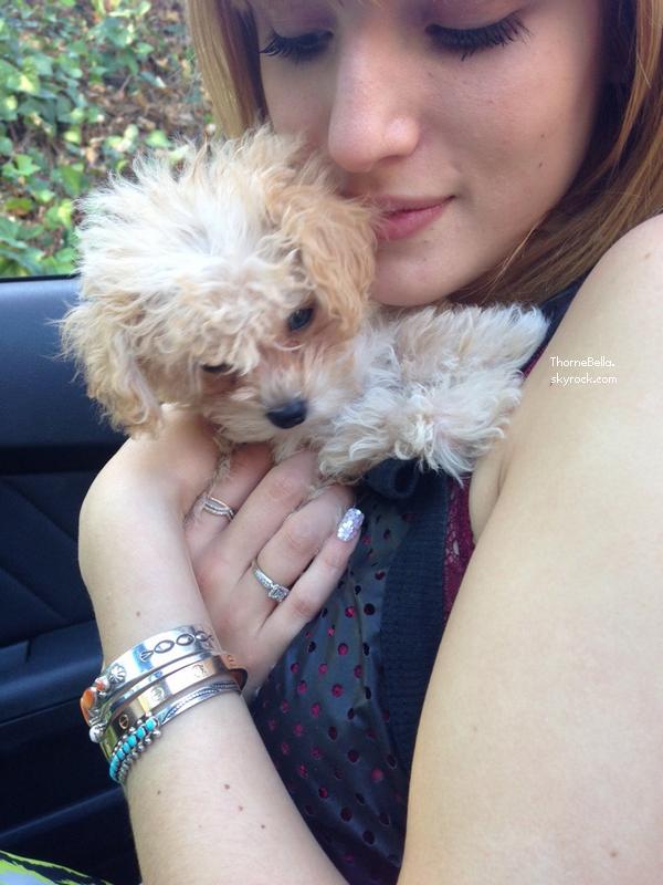 Bella sortant du salon de manucure le 11 novembre 2013.
