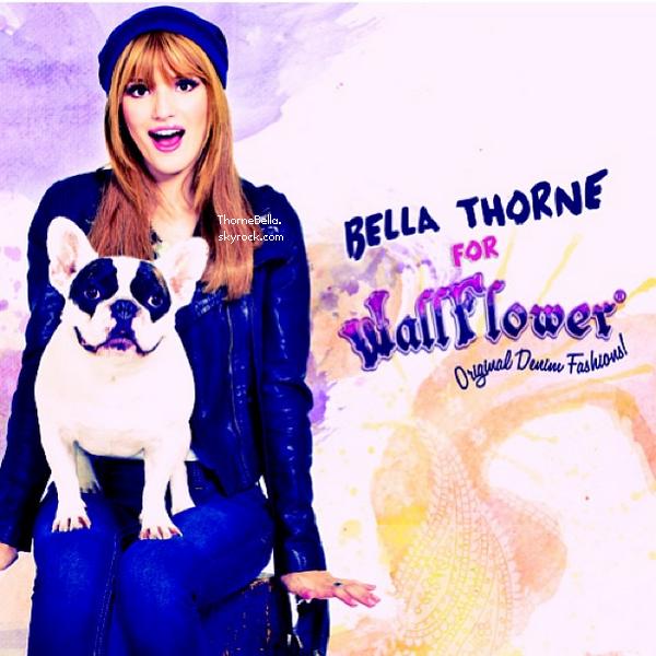 Nouvelles photos de Bella pouyr WallFlowers.