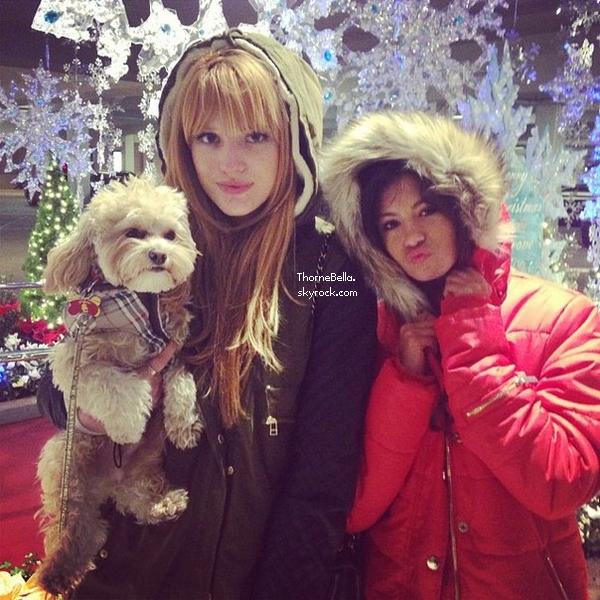 Nouvelles photos twitter de Bella du 8 décembre 2013.