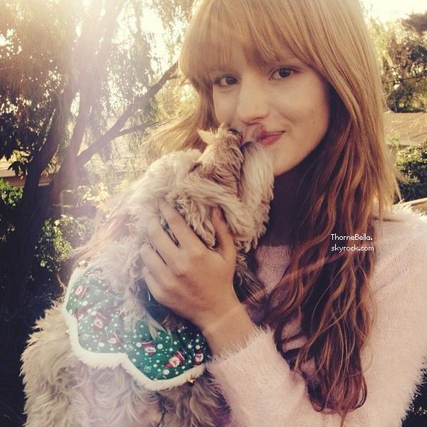 Nouvelles photos twitter de Bella.