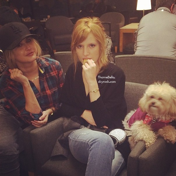 Photos twitter de Bella du 5 février 2014.