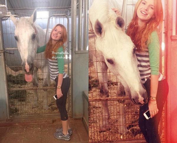 Bella a été voir un cheval avant d'aller à la gym le 7 août.