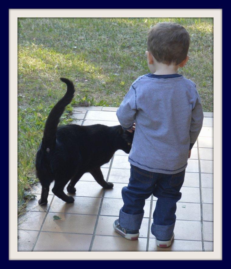 LE  CHAT   ET    L'ENFANT !!           photo  SM99