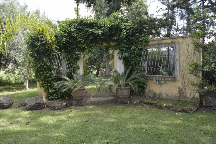"ITALIE   ""LE JARDIN D'AGREMENT""            photo SM99"