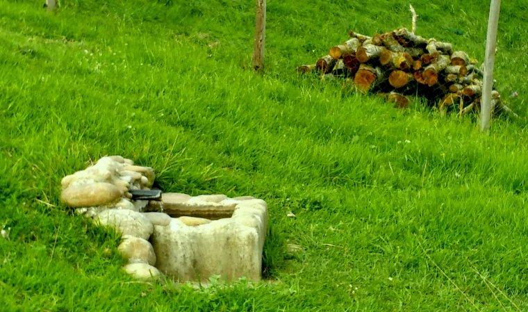 LA  PHOTO PAS A PAS !               photos  C.A.