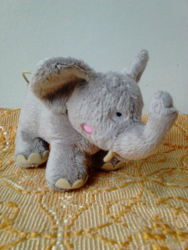 ELEPHANT FLUURS 2006