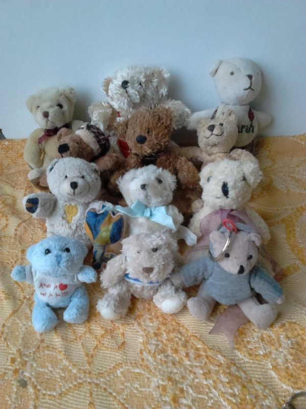 MINI OURS