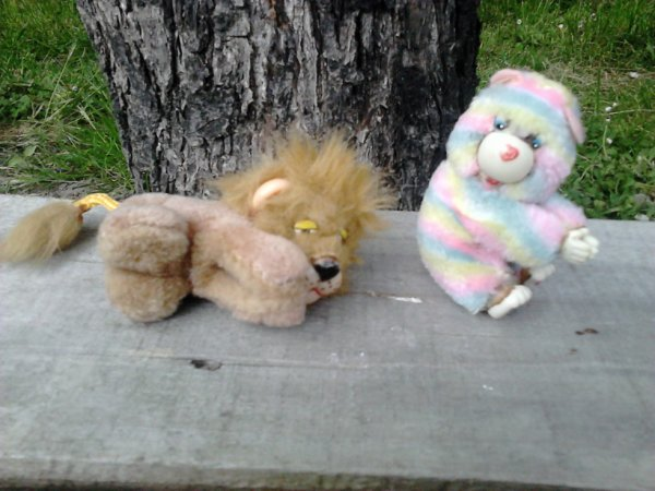 bisounours et lion pinces