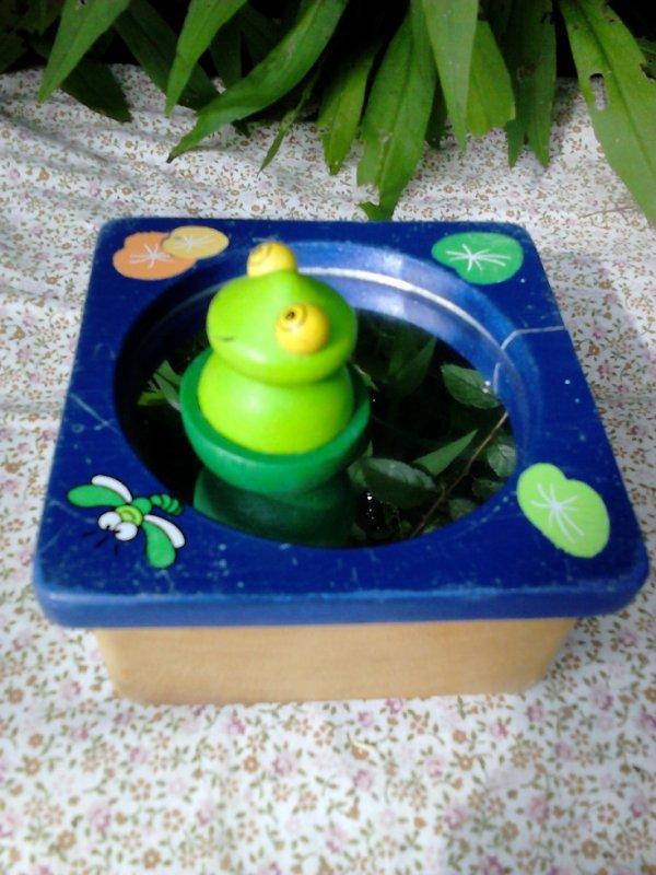 boite a musique grenouille