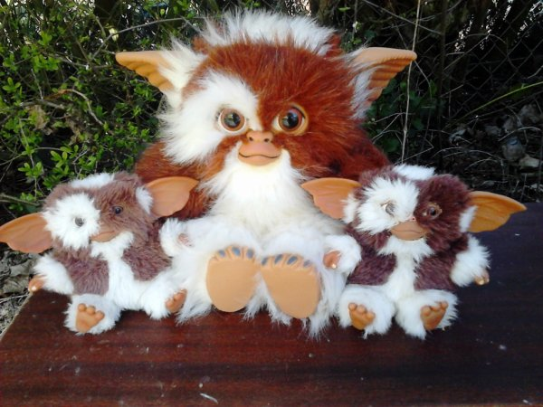 peluches gremlins ou guizmo