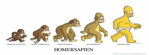 evolution simpson :)