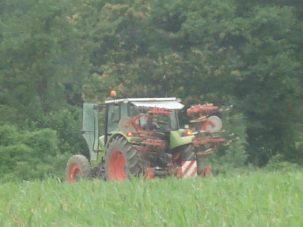 Binage sur maïs 2012 ----> Claas Axos 340