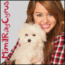 Photo de MimilRayCyrus