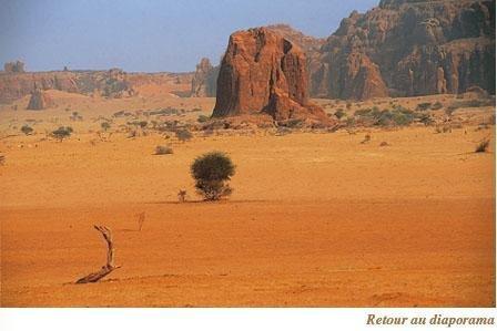 deser afrique
