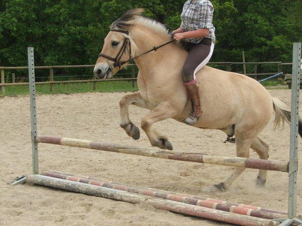 Horse-Riding♥