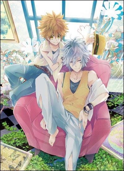 Byakuran x Tsunayoshi : Rien de mieux qu'une relation méchant x héros