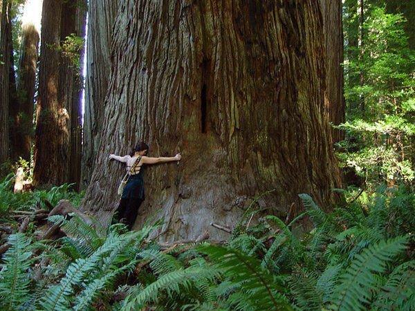 Le contact avec la nature pour penser, se ressourcer, se reforger un mental pour avancer dans la vie