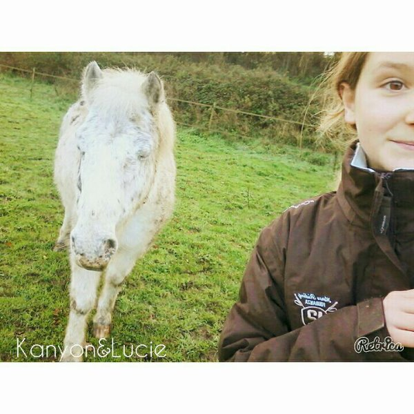 Tu me manques petit poney..♡