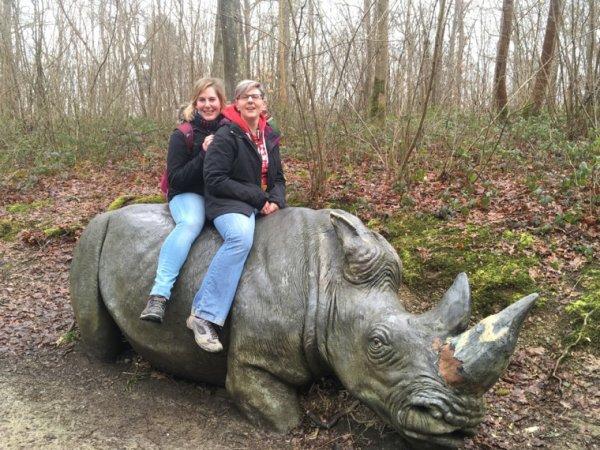 Les drôles de dames rencontrent un rhinocéros