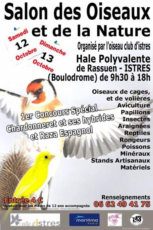 Bon salut a tous venaient nombreux le 12 et 13 octobre à l'exposition spécial chardonnerets hybride et raz a